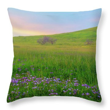 Wally Baskets At Sunrise Throw Pillow by Marc Crumpler