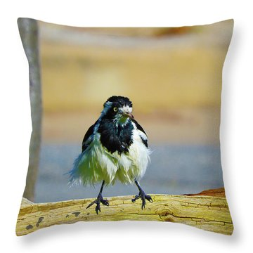 Throw Pillow featuring the photograph Wally The Wet by Mark Blauhoefer