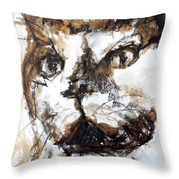 Walnut And Charcoal Throw Pillow by Mary Schiros