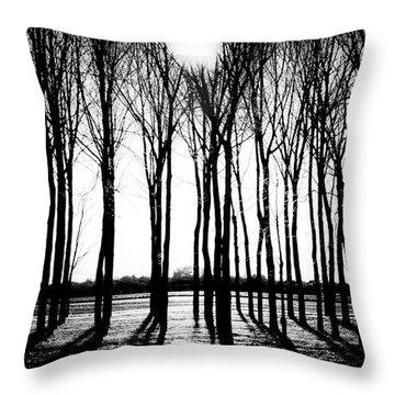 Walnut Grove Fall Evening Throw Pillow