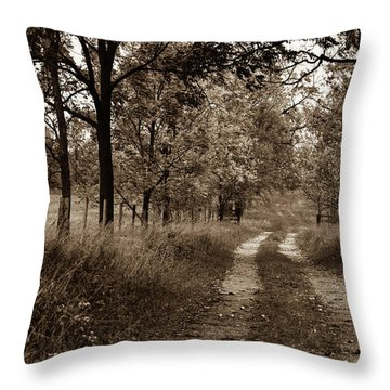 Walnut Lane Antiqued Throw Pillow
