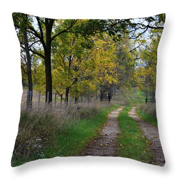 Walnut Lane Throw Pillow
