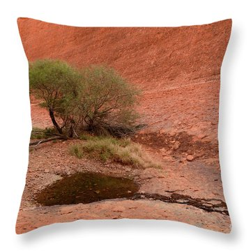 Throw Pillow featuring the photograph Walpa Gorge 01 by Werner Padarin