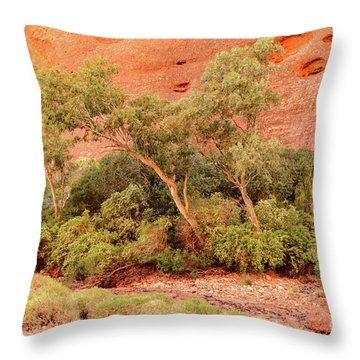 Throw Pillow featuring the photograph Walpa Gorge 03 by Werner Padarin