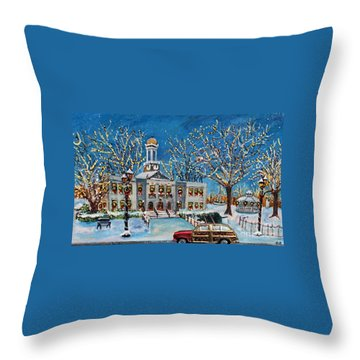 Waltham Common Shimmering Throw Pillow