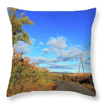 Wanderer's Way Throw Pillow