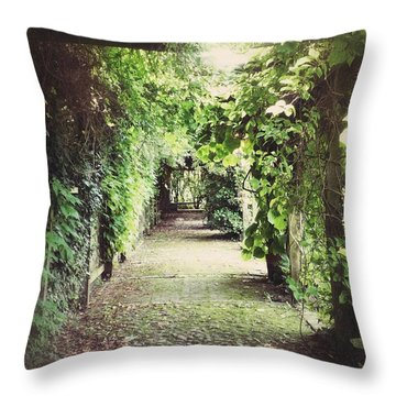 Throw Pillow featuring the photograph Wandering by Karen Stahlros