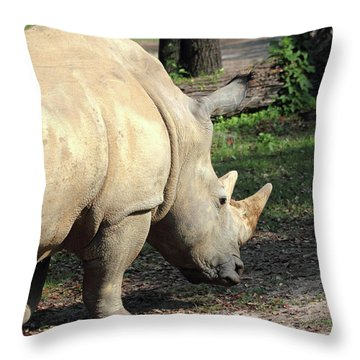 Wandering Rhino Throw Pillow by Mary Haber