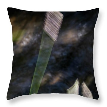 Wands Over Water Throw Pillow
