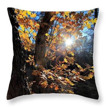 Waning Autumn Throw Pillow