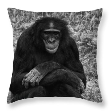 Wanna Be Like You Throw Pillow