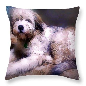 Want A Best Friend Throw Pillow