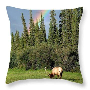 Wapiti Rainbow Throw Pillow by Bruce W Krucke