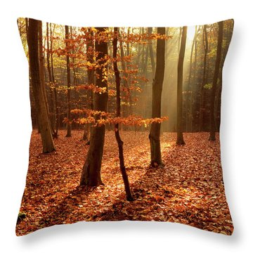 War Down, Queen Elizabeth Country Park, Hampshire Throw Pillow