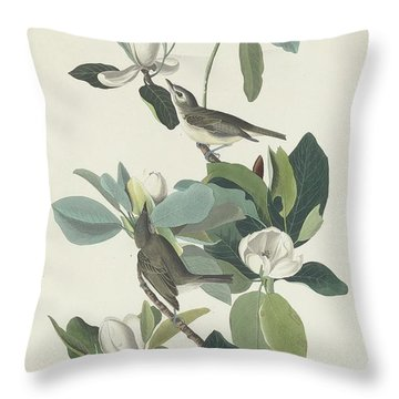 Warbling Flycatcher Throw Pillow by Dreyer Wildlife Print Collections