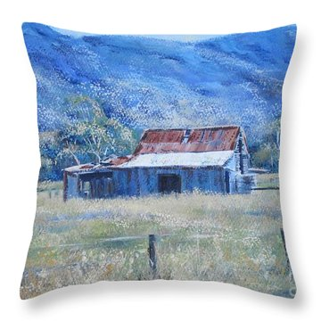 Warby Hut Throw Pillow