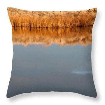 Throw Pillow featuring the photograph Warm Afternoon Glow by Monte Stevens