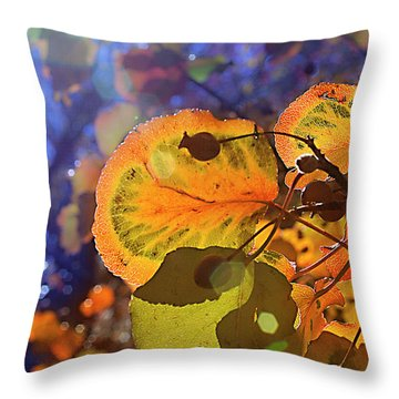 Warm Autumn Day Throw Pillow by Kat Besthorn