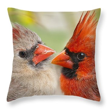 Warm Fluffy Feelings Throw Pillow by Bonnie Barry