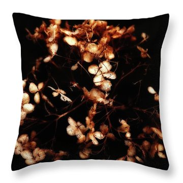 Warm Glow  Throw Pillow