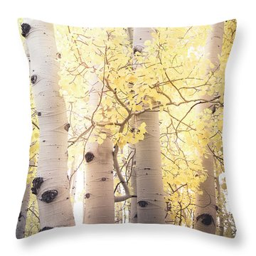 Throw Pillow featuring the photograph Warm Gold by The Forests Edge Photography - Diane Sandoval
