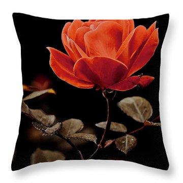 Warm Sepia Rose Throw Pillow