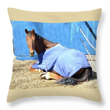 Warm Winter Day At The Horse Barn Throw Pillow