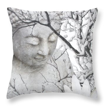 Warm Winter's Moment Throw Pillow by Christopher Beikmann