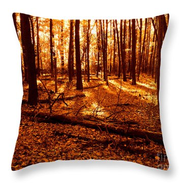 Warm Woods Throw Pillow