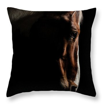 Warmblood Throw Pillow