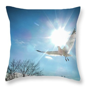 Warmed Wings Throw Pillow