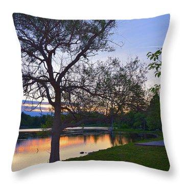 Warming House Throw Pillow