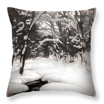 Warmth Of A Winter Day Throw Pillow