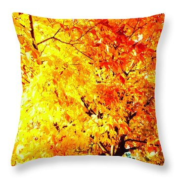 Warmth Of Fall Throw Pillow