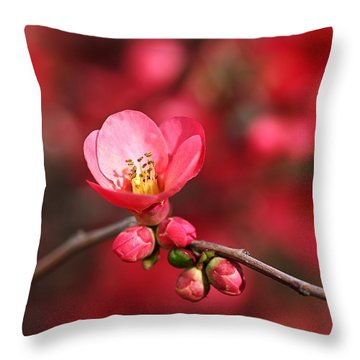 Warmth Of Flowering Quince Throw Pillow