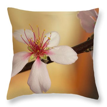 Warmth Of Hope. Throw Pillow