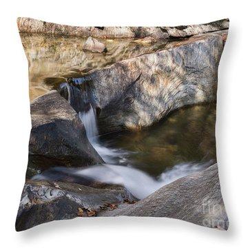 Warren Falls Throw Pillow