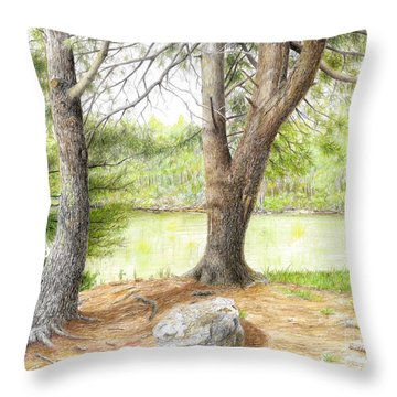 Throw Pillow featuring the drawing Warriors Path St Park by Mike Ivey