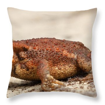 Throw Pillow featuring the photograph Warts 'n' All by Richard Patmore