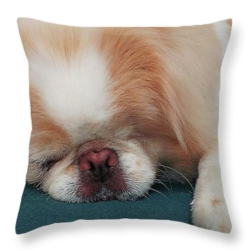Throw Pillow featuring the photograph Wasabi, Japanese Chin. by Roger Bester