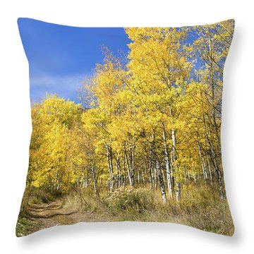 Wasatch Fall Throw Pillow
