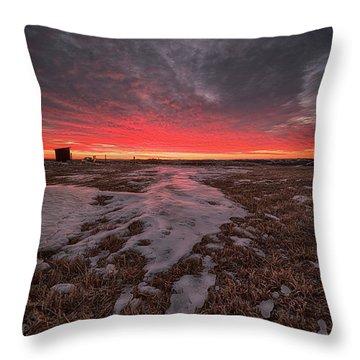 Wascana Dawn Throw Pillow by Ian McGregor