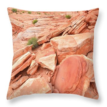 Throw Pillow featuring the photograph Wash 4 Color In Valley Of Fire by Ray Mathis