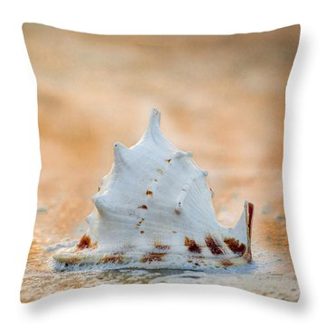 Throw Pillow featuring the photograph Washed Up by Sebastian Musial