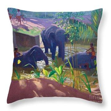 Washing Elephants, Sri Lanka Throw Pillow