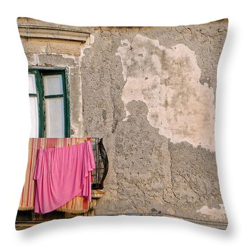 Washing Throw Pillow by Robert Charity