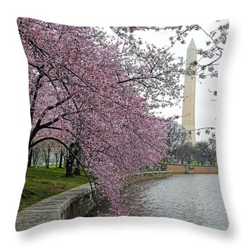 Washington Cherry Blossoms Throw Pillow by Mitch Cat