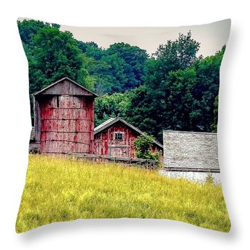 Throw Pillow featuring the photograph Washington County Vignette by Kendall McKernon