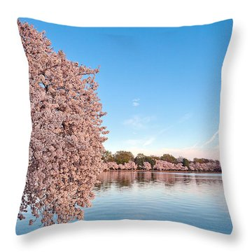 Washington Dc Cherry Blossoms Throw Pillow