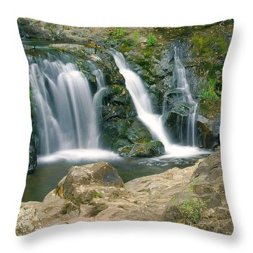 Washington Falls 3 Throw Pillow by Marty Koch